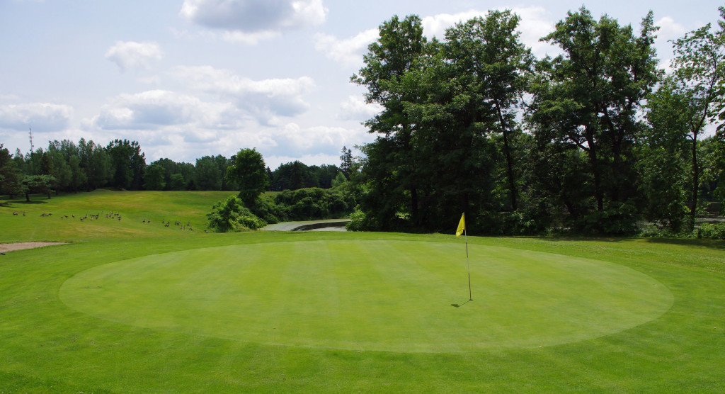 Delhi Golf  & Country Club - Norfork County