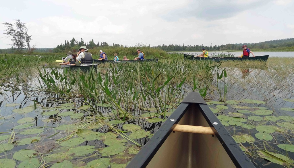 Wild Life Center Canoe Trip