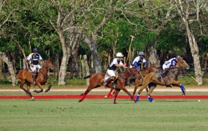 Polo Match at Casa de Campo
