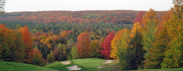 Treetops Michigan – High Above The Rest