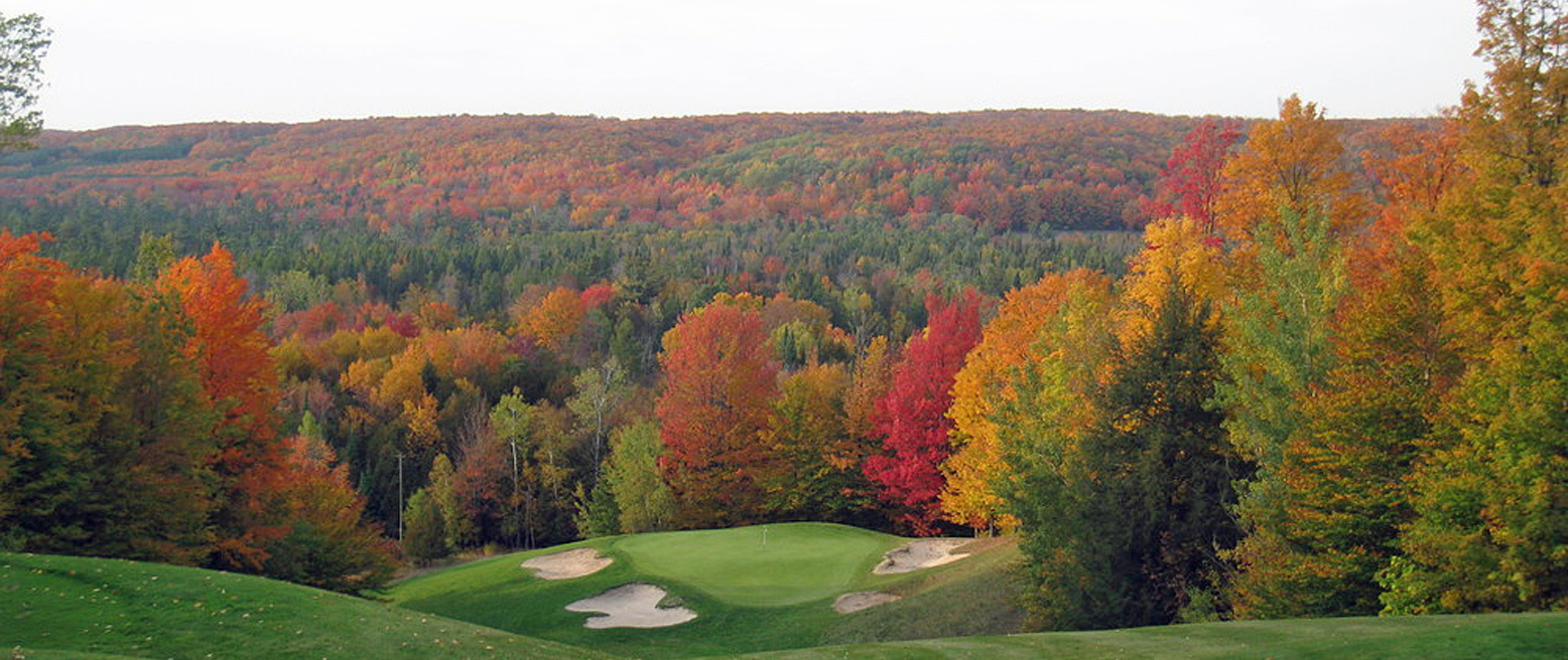 Treetops - Masterpiece Course