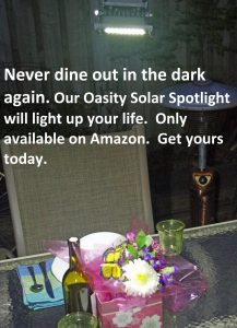 Oasity Solar Floodlight